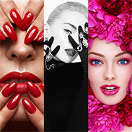 Iconic Beauty Colors